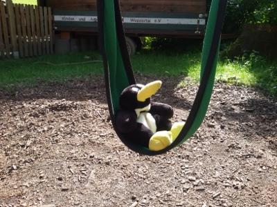 KiJu_Pinguine_20